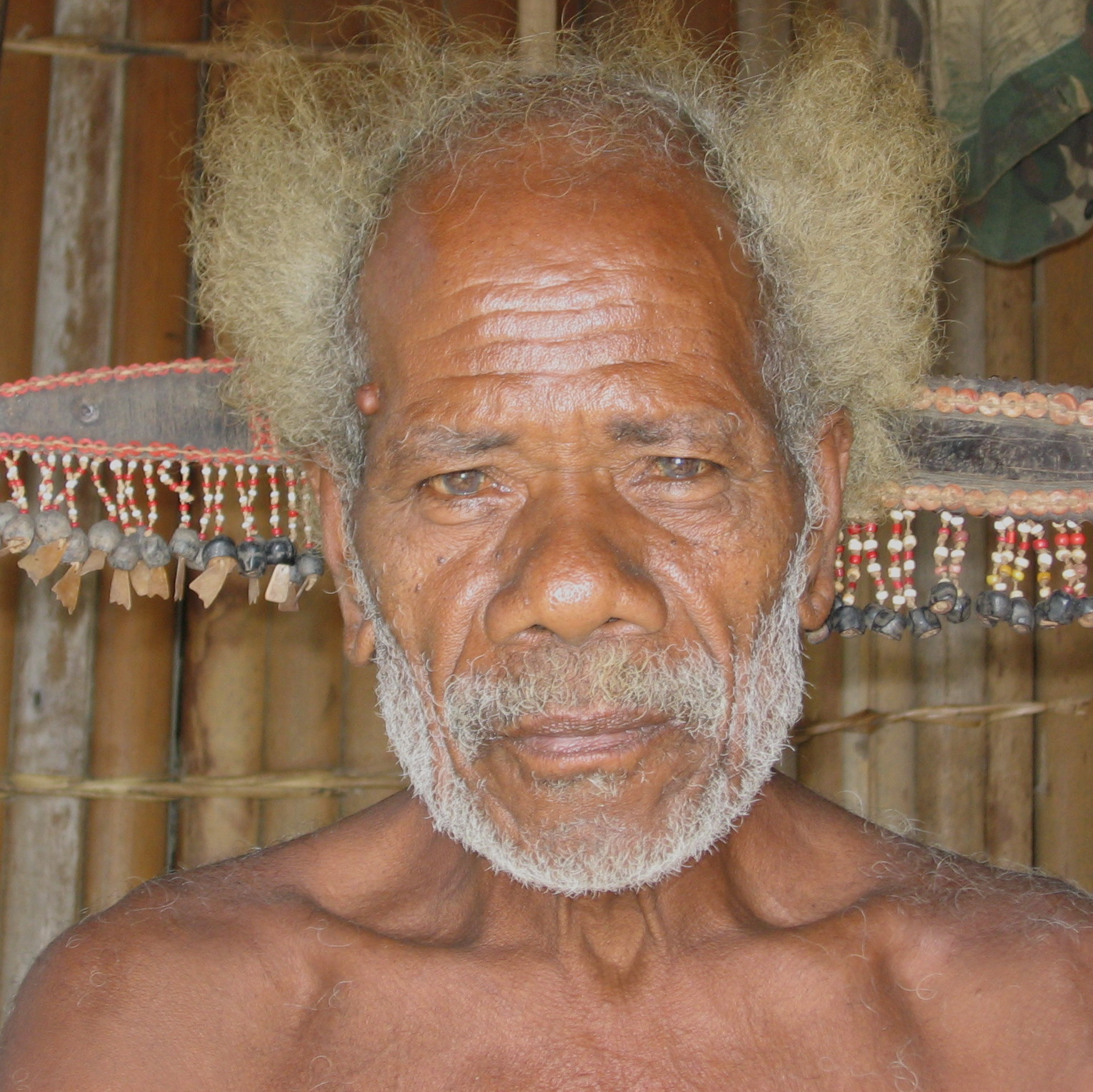 Collingwood Bay Man with Combs, New Guinea Art, Oceanic Art, South Pacific Art, Tribal Art