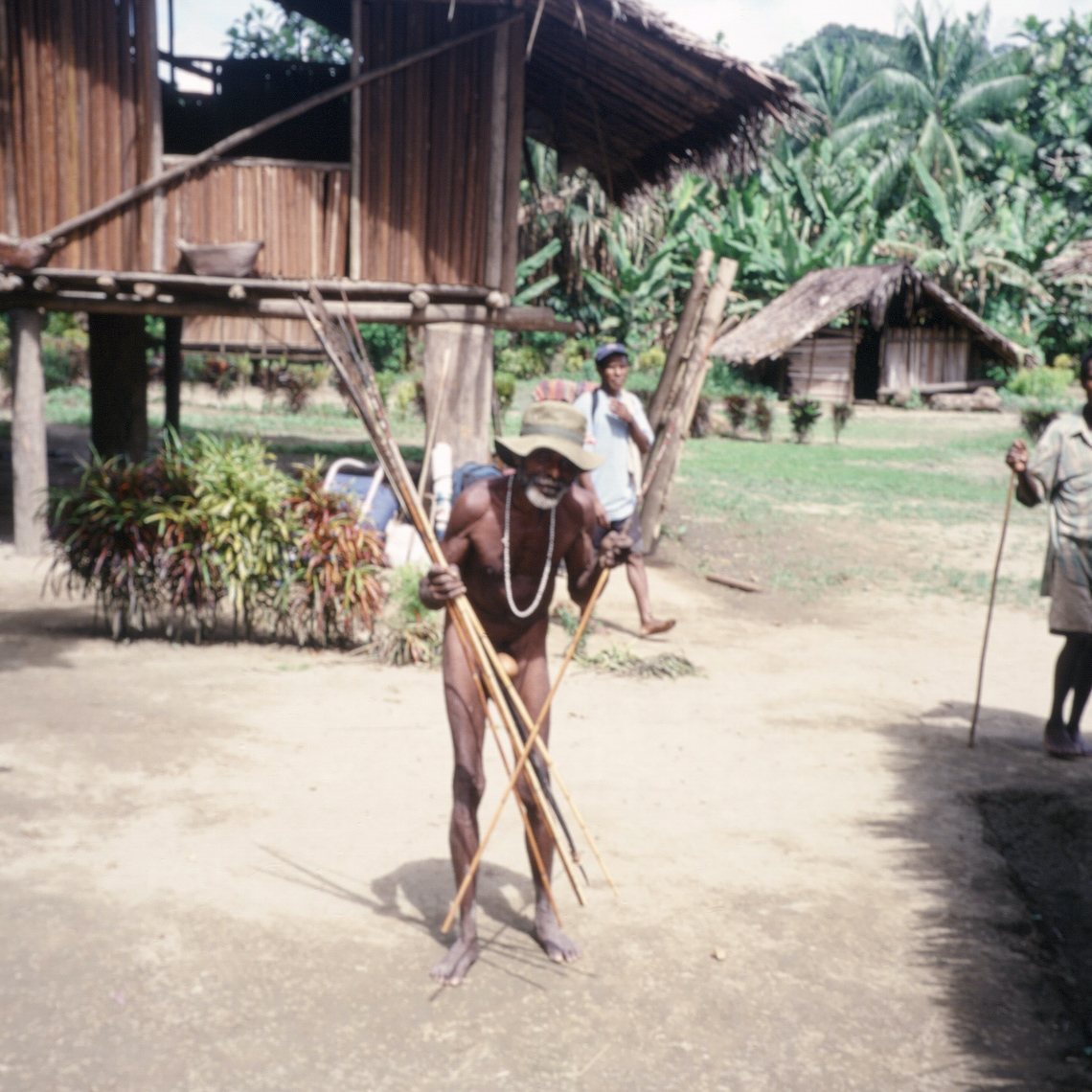 There is still some fight left in this old New Guinea warrior from the Amanab area, West Sepik Province, Papua New Guinea.  Stooped with age, brandishing the long bamboo arrows used in battle and wearing the traditional penis gourd—nothing fancy here, just a plain undecorated version the size and shape of a goose egg, circa 2001/2.