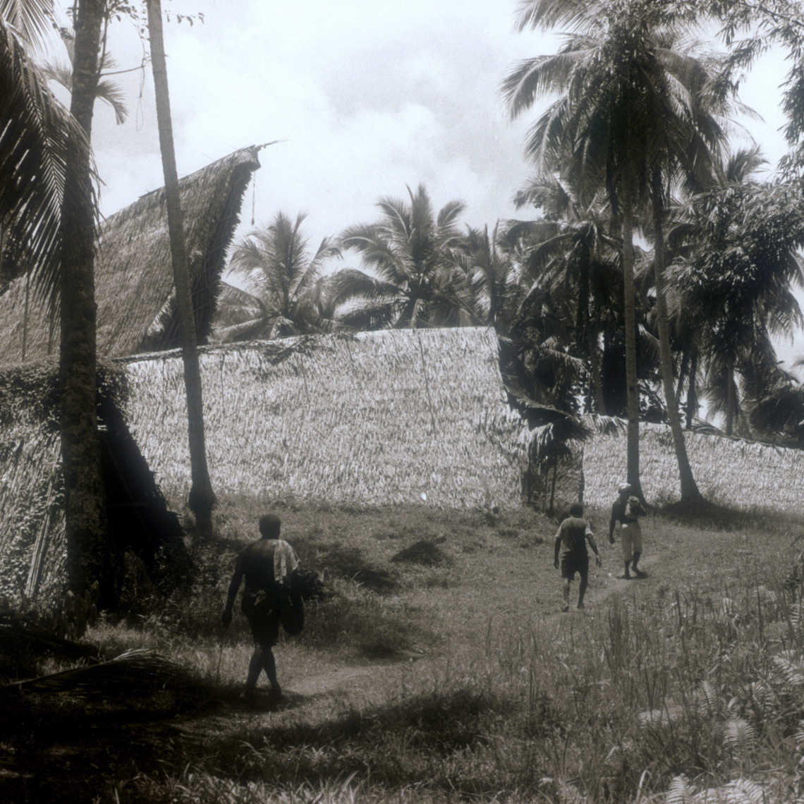 Walking Into Abelam Village With Tall Ceremonial House, Collecting New Guinea Art