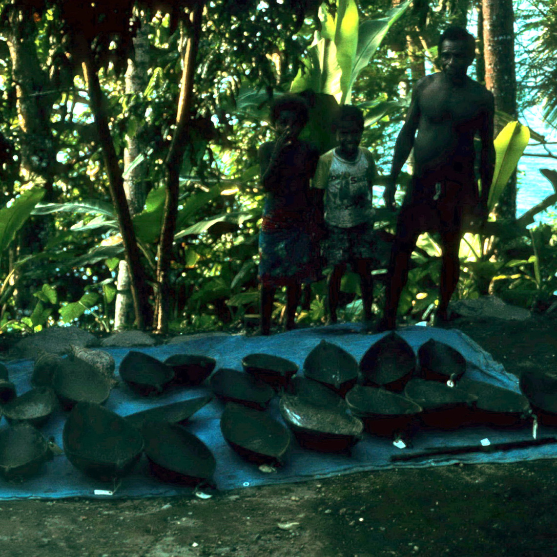 Nice Haul of Schouten Island Wooden Bowls, Field Collecting New Guinea Art