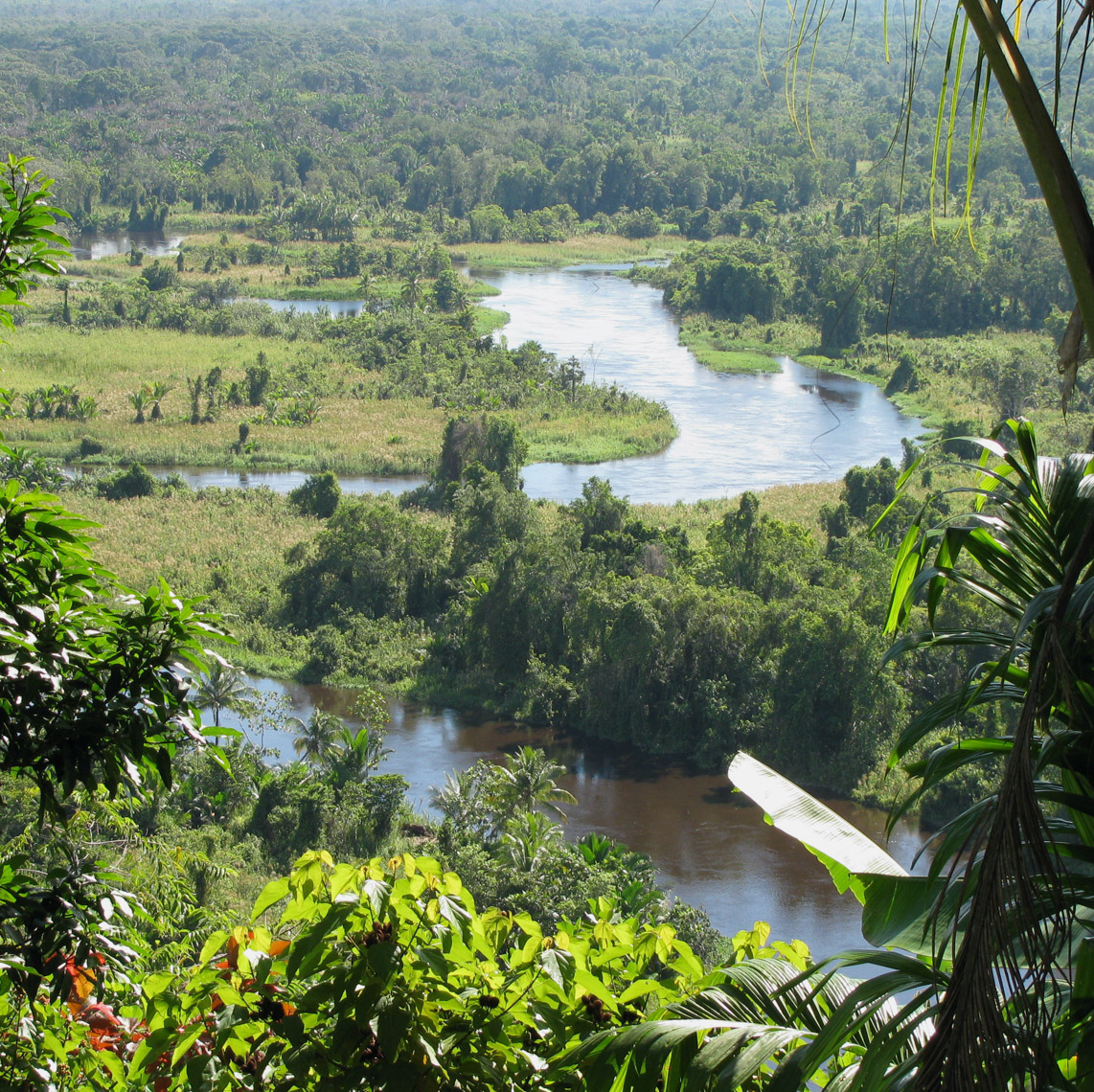 Musa River, Looking for Great New Guinea Art
