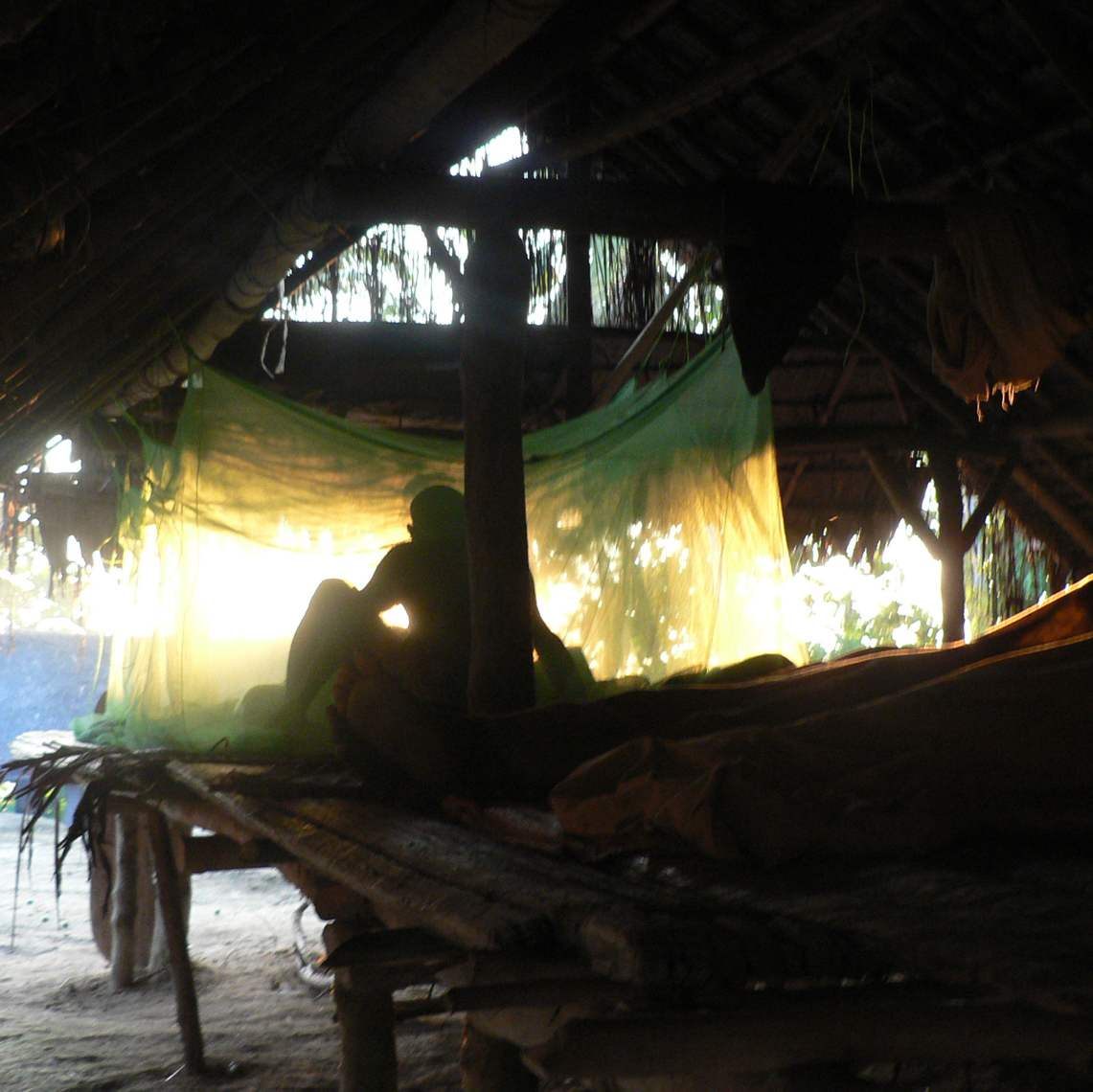 Mosquito Net Strung Up, Field Collecting New Guinea Art